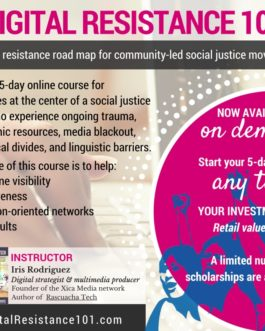 Announcing the Digital Resistance 101 online course