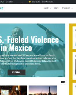 Stop Gun Violence in Mexico (Website)